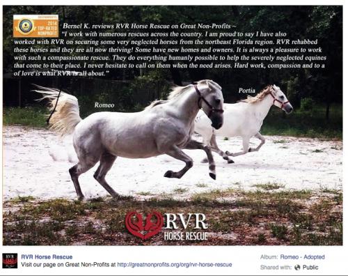 RVR FB