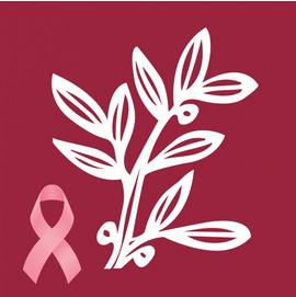 Top-Rated Breast Cancer Nonprofits