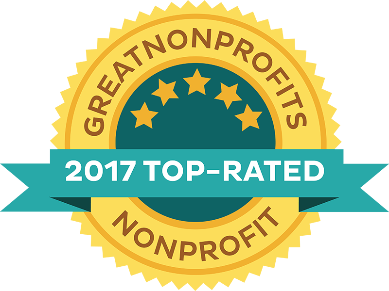 Which are the Top Nonprofits to Donate to in 2017?