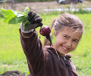 Little girl holding up a root crop she harvested - Seattle Jewish Community School