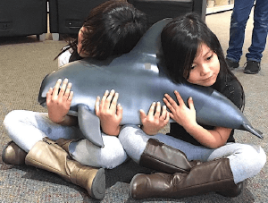 2 young girls hugging a whale stuffed animal - Save the whales, Inc - GreatNonprofits