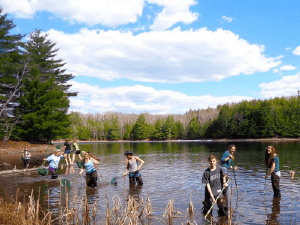 People cleaning a lake - Conserve School - GreatNonprofits