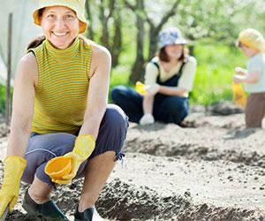 Volunteer planting Humanitys Team