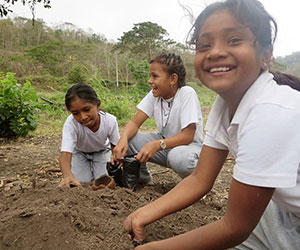 Children learning about forest conservation by planting Ceiba Foundation for Tropical Conservation,Inc.